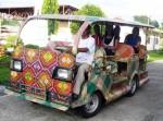 Bamboo Taxi 01