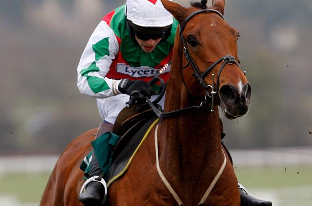 UK Grand National 2010 - Tricky Trickster