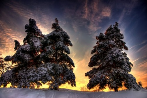 snow 630x421 500x334 Most Beautiful Nature Photography