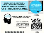 Facts Internet Infografic