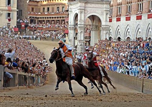 palio race15 Sienas Palio Horse Race