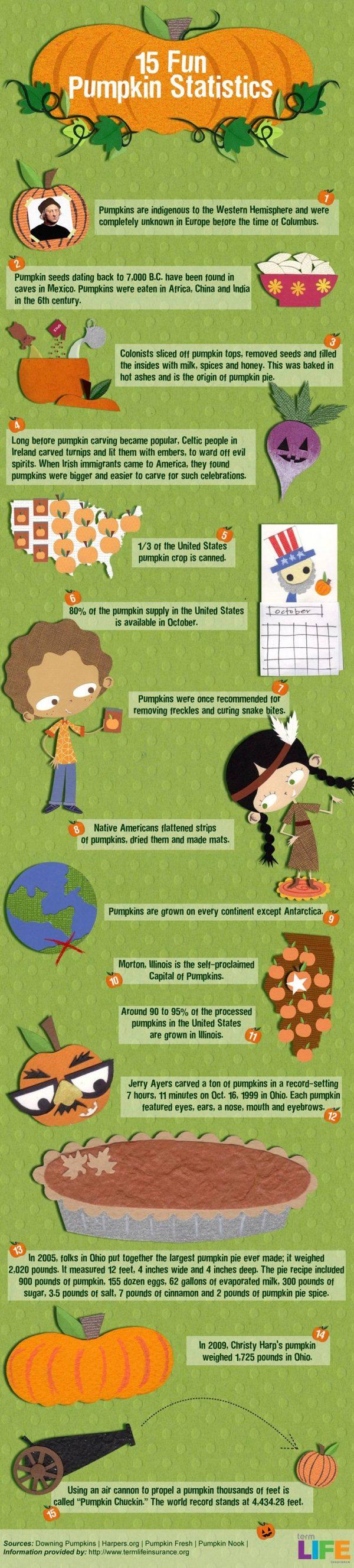 15 Fun Facts & Statistics About Pumpkins