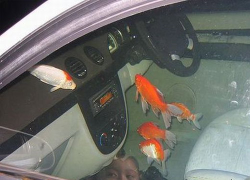aquarium car Pimp My Car Interior