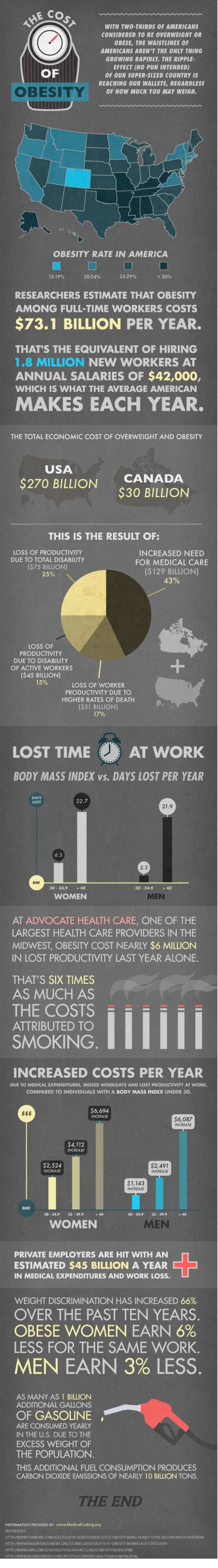 The Cost of Obesity (Infographic)