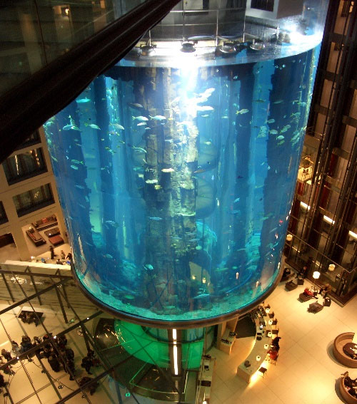 inside aquarium Largest Aquarium Elevator In The World