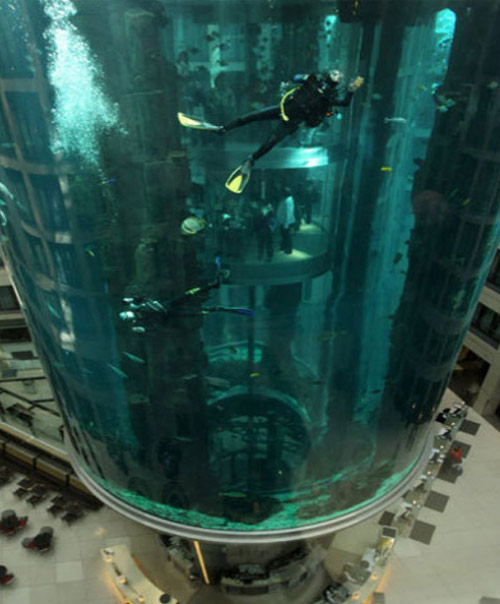 largest aquarium inside hotel Largest Aquarium Elevator In The World