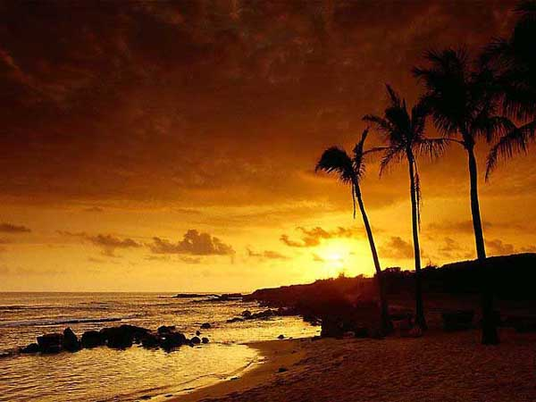 Beautiful Sunset Photos