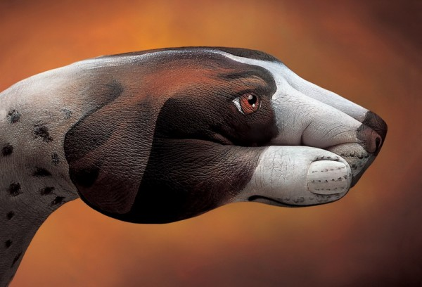 body art08 600x408 Amazing Body Arts by Guido Daniele