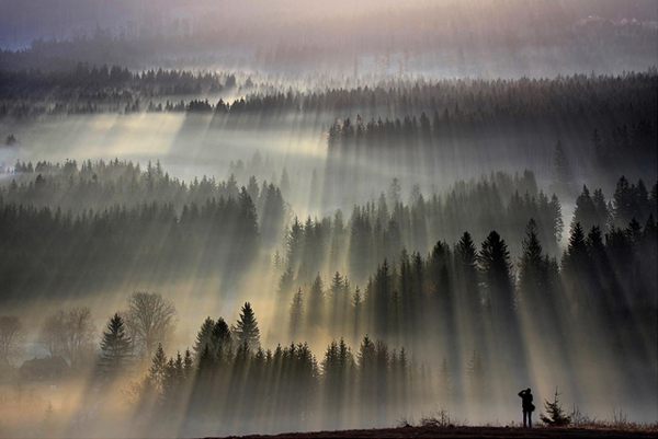 Sunrise - Amazing Morning Sceneries