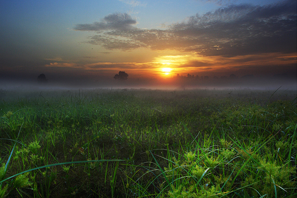 early morning sceneries30 Amazing photos of early morning sceneries around world