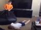 Funny Kids Fails Compilation