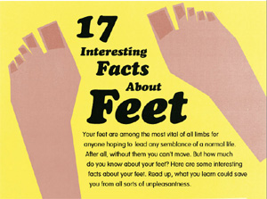 Facts about Feet