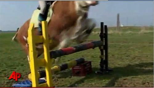 Girl Teaches Cow to Jump