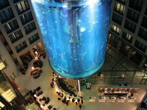 Largest Aquarium Elevator In The World