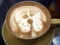 Amazing coffee arts