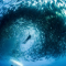 Divers swarmed by thousands of fish